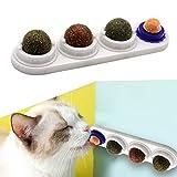 Katzensnack Süßigkeiten, Katzenleckspielzeug Molar Zahnen Snack Spielzeug mit solidem Candy Ball, selbstklebende Katzenminze Essbare Wand Ball für Katzen Reinigung Zähne und Schutz des Magens