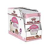 Royal Canin Feline Portionsbeutel Health Nutrition Kitten Soße 12 x 85g