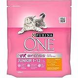 PURINA ONE Dry Cat Junior 1 bis 12 Monate Huhn 450G (6er-Set) 1