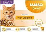 IAMS Delights Kitten Nassfutter - Multipack Katzenfutter mit Huhn in Sauce, hochwertiges Futter für Junior Kätzchen von 1-12 Monate, 12 x 85g
