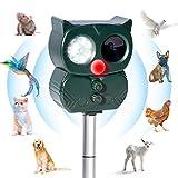 Ultraschall Katzenschreck für Garten Solar Abwehr Katzenschreck Tiervertreiber Hundeschreck Marderschreck Gegen Katzen Hunde Marder Tierabwehr Waschbär Vögel mit LED Blitz 5 Modus IP66 Wasserdichter