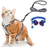 Simpeak Katzengeschirr, Katze Geschirr mit Leine und Halsbänder, Katzengeschirr Ausbruchsicher für Katze - Dunkelgrau