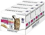 Perfect Fit Katzenfutter Nassfutter Adult 1+ Auswahl, 48 Portionsbeutel (4 x 12 x 85g)