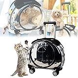 YCRD Haustier Rucksack Pet Travel Träger mit Rädern und Rucksack-Bügel, bequemen Haustier-Trolley Starken Breathable Transparent Panels for Reisen Wandern Camping Outdoor-Nutzung Katzenrucksack