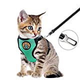 BACIVIC Katzengeschirr Geschirr für Katzen Ausbruchsicher Katzenleine, Nachts Leuchten Ausbruchsicher Einstellbarer Weicher Netz-Holster – ideal für Kitten Hunde Nächtlichen Gehen, Minzgrün