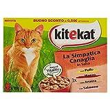 Kitekat Multipack in attraktiver canaglia- Teebeutel feuchten in Salsa für Katzen 12Briefumschläge X 100GR.