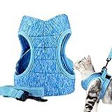 1 Stück Katzengeschirr und Leine Set, Katzen Weich Brustgeschirr Einstellbar Katzengeschirr für Kätzchen Welpe Kaninchen Hase Frettchen und kleine Haustier Tiere
