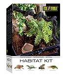 Exo Terra Rainforest Habitat Kit, Terrarien Starter Set Regenwald, inkl. Abdeckung, Thermometer, 3 künstlichen Pflanzen, Bodengrund, Wassernapf, 1 Liane, 30 x 30 x 45cm