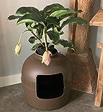 RHRQuality Katzentoilette Flower XXL braun unsichtbare Katzenklo mit Deckel 51Øx55cm