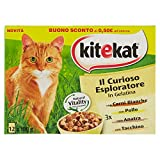 Kitekat Il Curioso Entdecker für Katzen aus Gelatine mit Huhn, Ente, Prühstück, 4 x 1200 g
