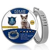 Floh- und Zeckenhalsband für Katzen, 8 Monate Schutz, verstellbar und wasserdicht, geeignet für alle Katzentypen