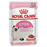 ROYAL CANIN Kitten Instinctive Wet Cat 85 g Beutel in Soße oder Gelee (Soße, 24 Beutel)