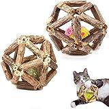 LONGPIN 2 STÜCKE Katzenminze-Spielzeug Für Indoor-Katzen, Natural Silvervine Stick Catnip Ball&Bell Ball-Katzenspielzeug, Katzeninteraktive Bissfeste Zahnreinigung Mint Ball
