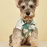 Haustierkleidung Hundebedarf Wind Pet Kleidung Sommer Neue Strandurlaub Hundekleidung Katze Katzenhemd Heimtierbedarf Katzenbedarf Retro Mode weiches atmungsaktives verstellbares Hundegeschenk-S
