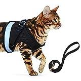 AEITPET Katzengeschirr katzenleine Geschirr für Katzen Ausbruchsicher Welpengeschirr Weich Kaninchengarnitur Katzen Air Mesh Verstellbar Hundeweste Harness (L, schwarz 2)