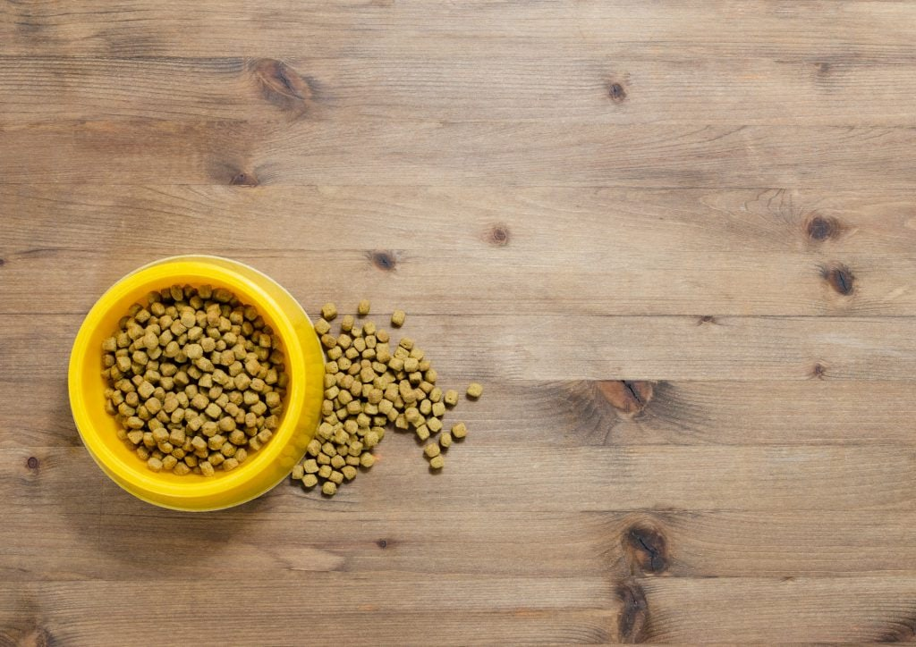 Katzenfutter-selber-machen