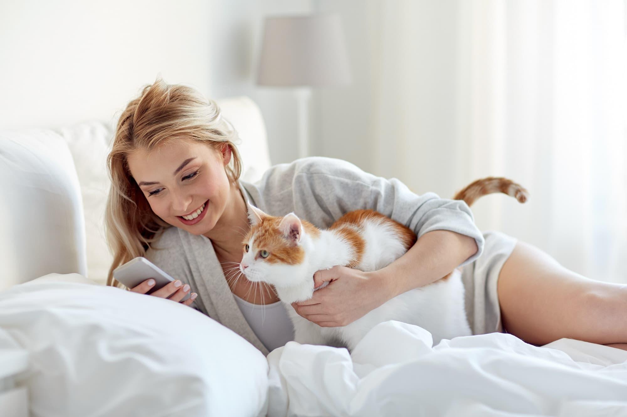 Katzen 220 Bersetzer Die Apps F 252 R Die Katze Smart Animals
